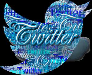 Twitter_logo_word