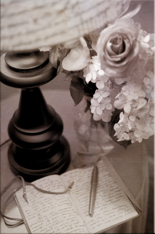 Sepia toned image of an open journal, a pen a lamp base and flowers.